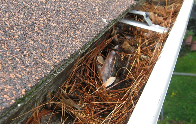 Just How Frequently Should Your Gutters Be Cleaned Long